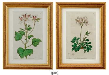 FIFTEEN COLOURED ENGRAVINGS FR