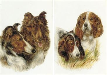 Two Collies Jock and Lucy; and