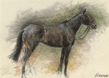Study of a filly
