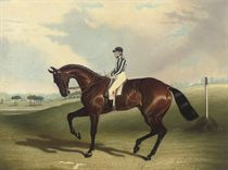 The Earl of Jersey's Bay Middleton, J. Robinson up