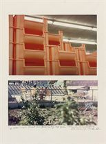 Kitchen trays in a discount store, Jersey City NJ 1967 Back Yards, Housing development, Staten Island, NY 1974