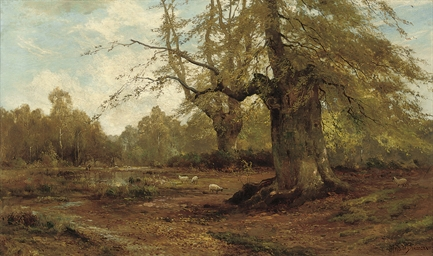 Burnham Beeches, Autumn