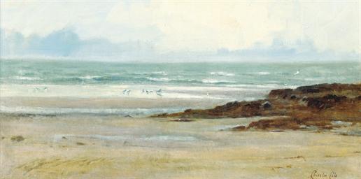Gulls on a beach, low-tide