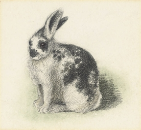 A piebald rabbit