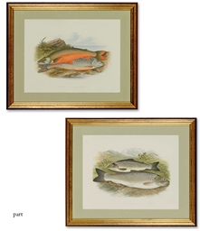 TEN CHROMOLITHOGRAPHS OF FISH
