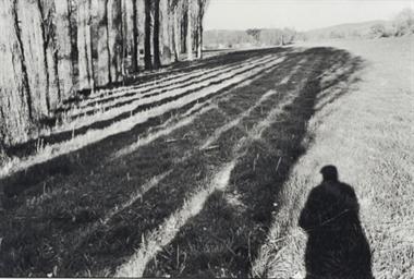 Provence, Self Portrait, 1999