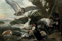 Waterfowl under attack by two Springer Spaniels and a buzzard, in a river landscape