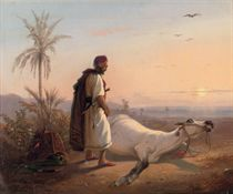 An Arabic horseman and his horse in the desert