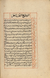 TWO MAMLUK MEDICAL TREATISES