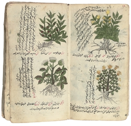 A TREATISE ON HERBAL MEDICINE