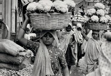 Jaipur, 1966
