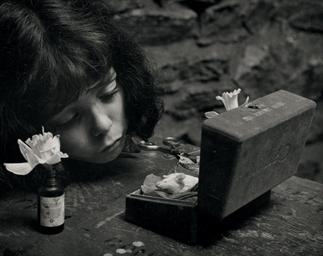 Death of Gus-Gus, 1953