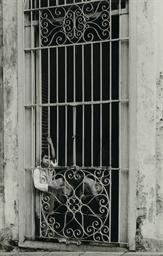 Havana, 1933