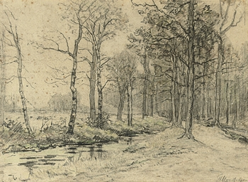 LANDSCAPE ALONG A STREAM IN A