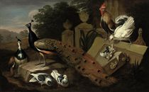 A male and a female peacock, two doves, a rooster, a hen with its chicks, and a patridge amongst antique vases and ruins in a landscape