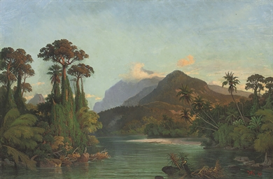A tropical river landscape