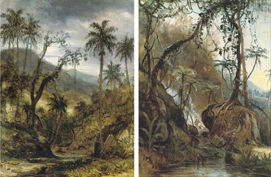Jungle river landscapes, belie