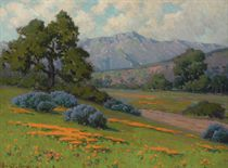 Bush Lupine and Poppies