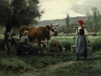 Ricolle du lait en poture: Milking Time