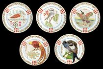 A Set of Eleven Porcelain Ornithological Plates