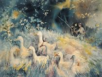 Homeward ducks