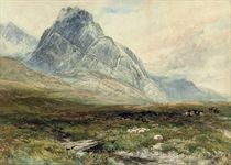 SHEEP AND CATTLE AT LLYS TRYFFAN, OGWEN VALLEY