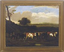 Cattle on the road to pasture