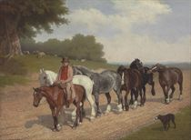 A groom with a string of carthorses and a dog, on a country road