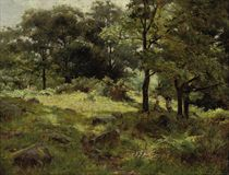 Figures in a wooded landscape near Llanbedr, Conway, Wales