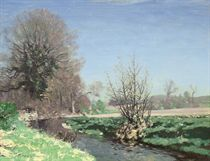 A river landscape in spring