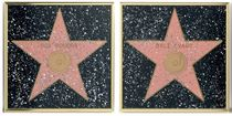 A GROUP OF WALK OF FAME STARS
