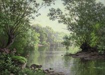 A quiet stretch of the river