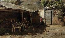 Donkeys in the farmyard