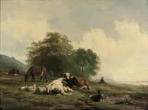 Cattle resting on the river bank