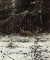 Deer in a forest in winter