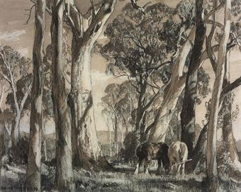 Horses grazing under gum trees