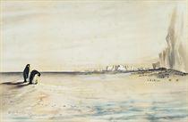 The Emperor Penguin Rookery, Cape Crozier