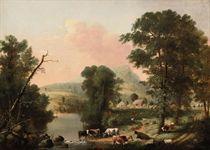Cows resting near a river