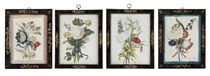 A SET OF FOUR IRISH GEORGE II EMBOSSED FLOWER PICTURES