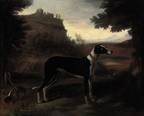 A hound in a landscape