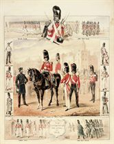The Infantry of the Guard: Studies of Grenadier Guards, Scots Fusilier Guards and Coldstream Guards