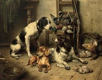 An English Pointer, a Dachshund and an English Springer Spaniel after the hunt