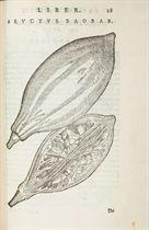 [BOTANIQUE] -- ALPINUS, Prosper (1553-1617) De plantis Aegyp