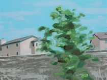 Houses with Tree