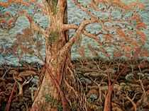 Hutan Kera (Monkey Forest)