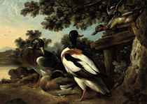 A wooded river landscape with ducks in a clearing