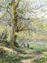 Picking bluebells, Haslemere, Surrey