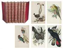 GOULD, John (1804-1881). The Birds of Australia. Londres:  Richard et John E. Taylor pour l'auteur, [1840]-1848-1869.