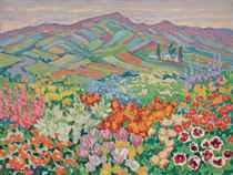 Fleurs dans un paysage du nord de l'Angleterre