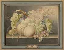 Attributed to Jan van Os (Middelharnis 1744-1808 The Hague)